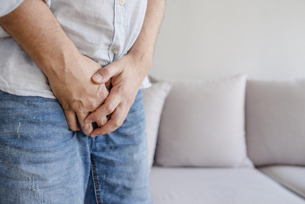 penisul organului membru